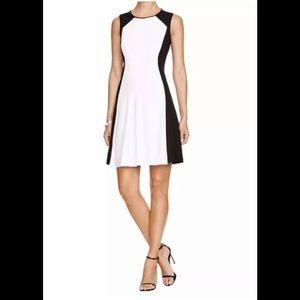Tahari BROOKE Dress, Size 6, Black & White. NWT